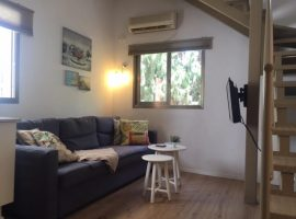 1 Bedroom Shenkin Loft